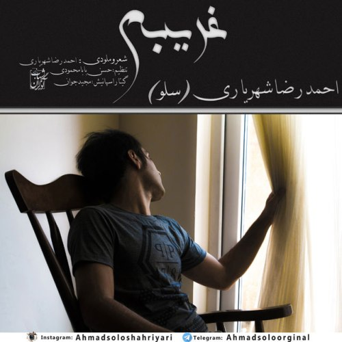 دانلود آهنگ غریبم احمدرضا شهریاری