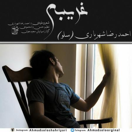 دانلود آهنگ غریبم از احمد سلو