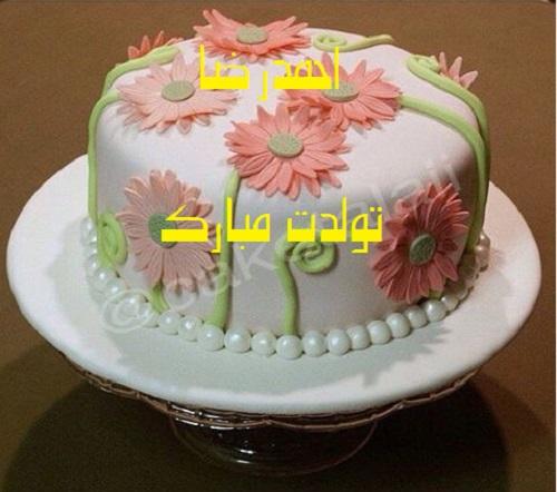 کیک با نام مهسا کیک تولد با اسم احمدرضا