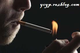 رژیم غذایی برای افراد سیگاری