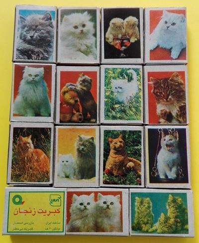 گربه (5).jpg (400×488)