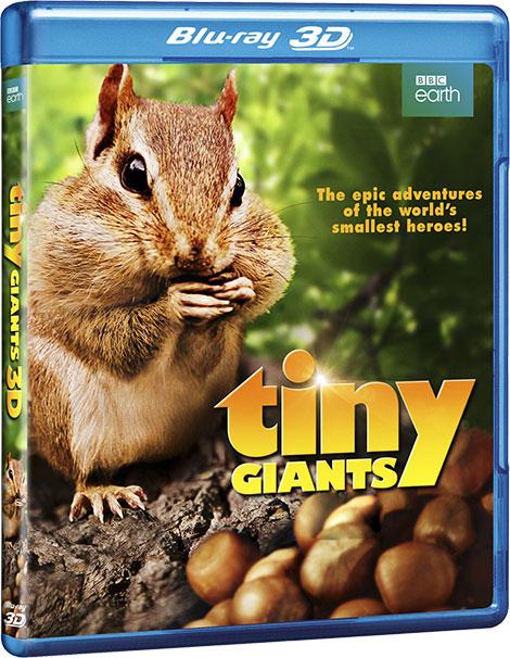 دانلود مستند غول های کوچک Tiny Giants 2014