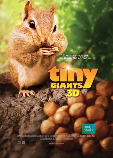 دانلود فیلم Tiny Giants 2014