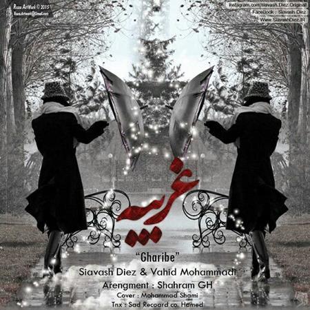 دانلود آهنگ جدید سیاوش دیز و وحید محمدی بنام غریبه