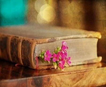 دانلود رمان راز شاهزاده شهر جادو pdf، جاوا اندروید