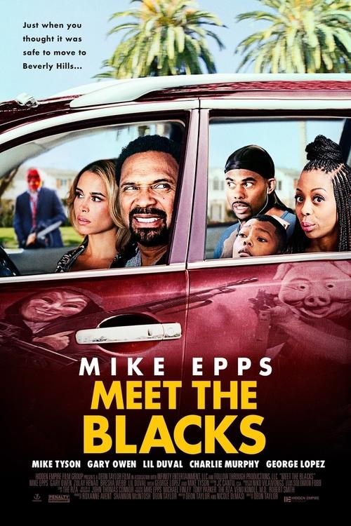 دانلود رایگان فیلم Meet the Blacks 2016
