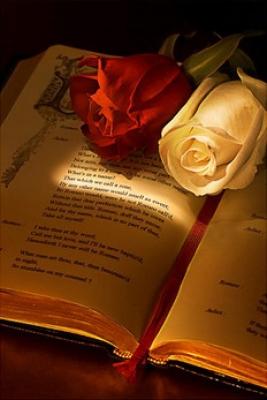 دانلود رمان من بهت علاقه دارم اندروید ، PDF و آیفون
