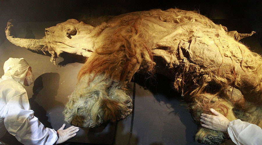 علت انقراض نسل ماموت ها