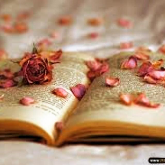 دانلود رمان گلبرگ های عشق جاوا،اندروید، pdf