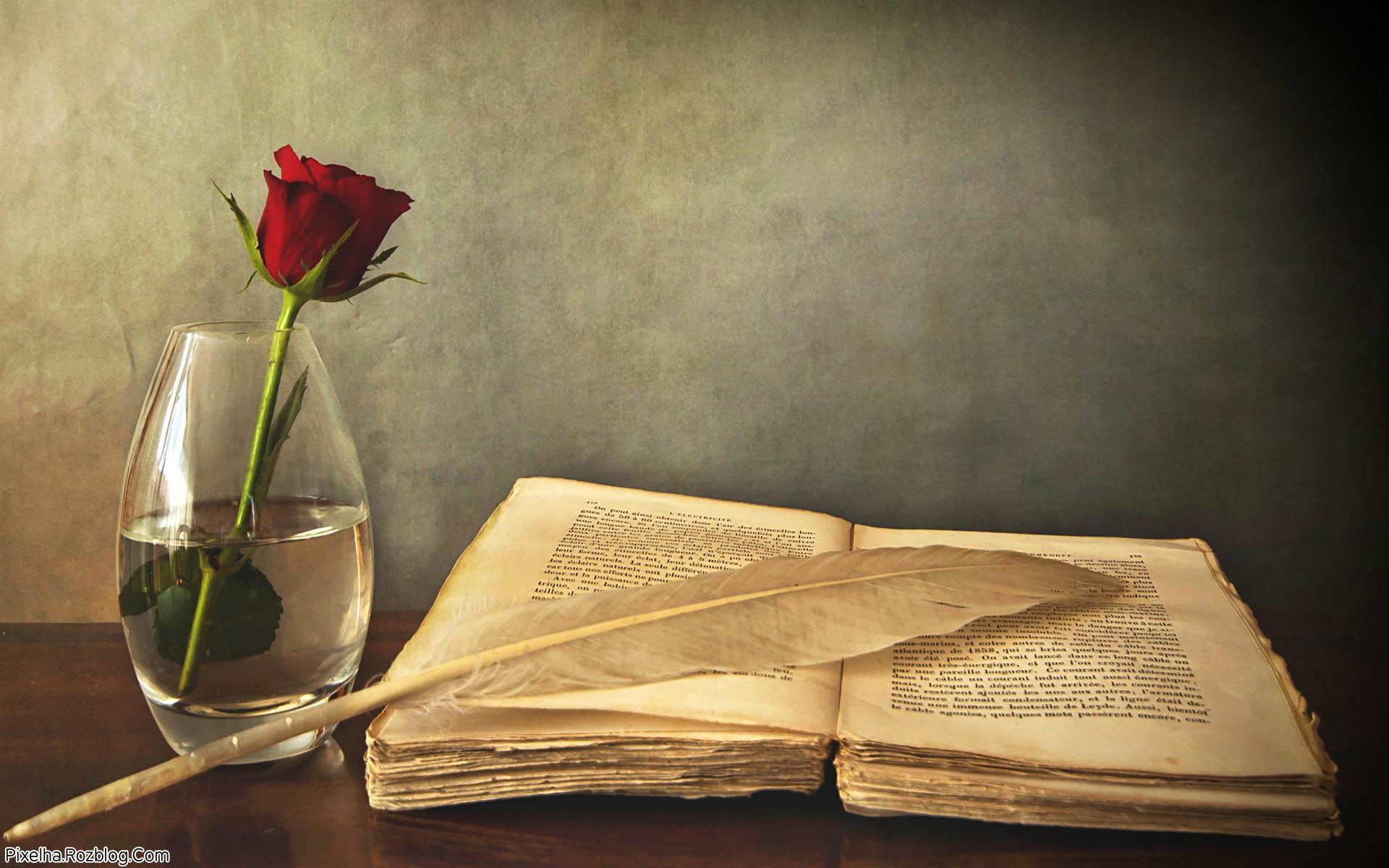 دانلود رمان عشق بی رحمه اندروید , PDF و آیفون
