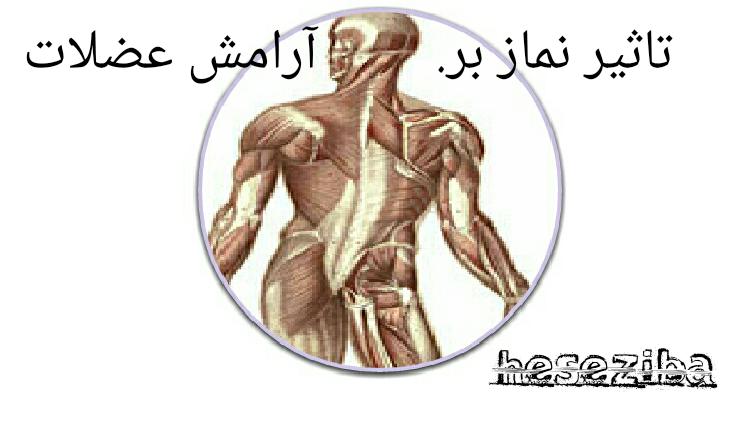 تأثیر نماز بر آرامش عضلات