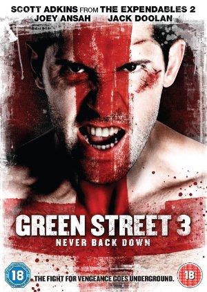 دانلود رایگان فیلم Green Street 3 Never Back Down 2013