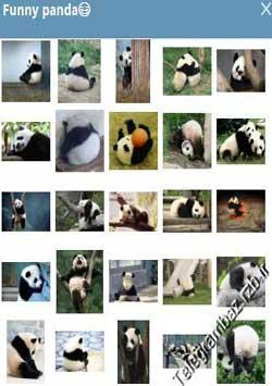 استیکر تلگرام Funny panda