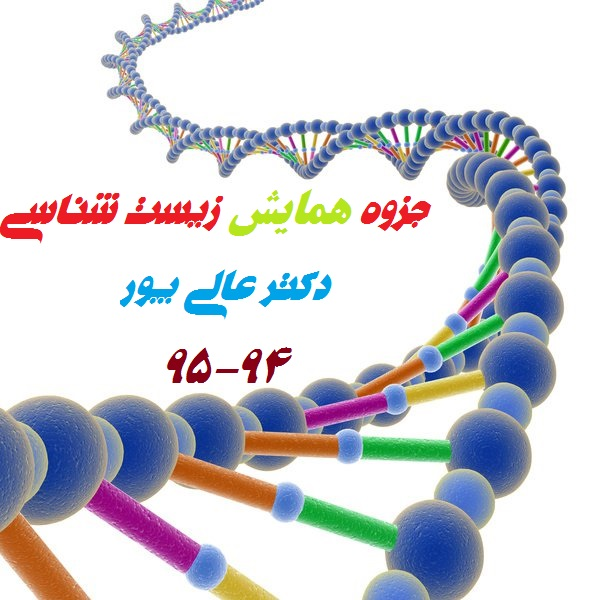 جزوه همایش زیست شناسی (ویژه کنکور 95-96)