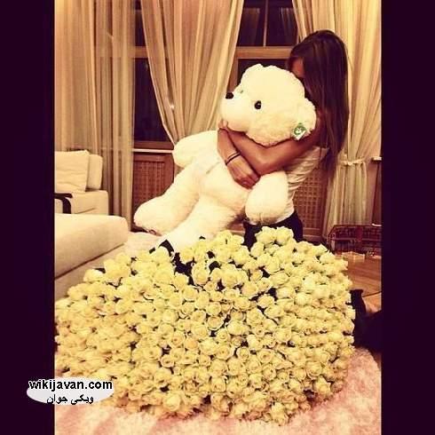 عکس برای پروفایل خرس عروسکی خوشگل