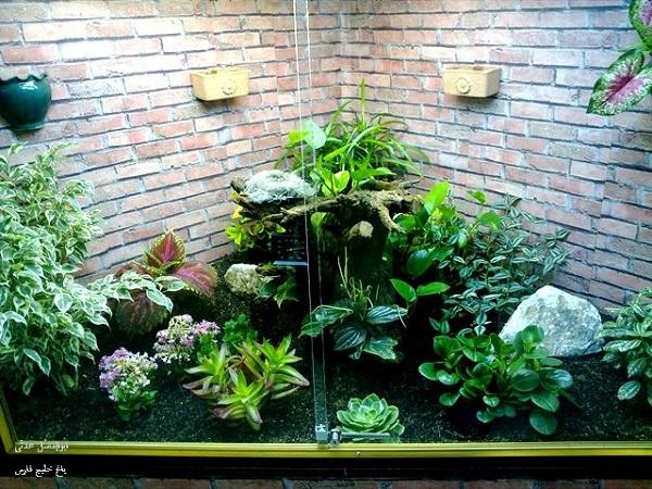 ساخت تراریوم، باغ شیشهای کوچک در دکوراسیون منزل