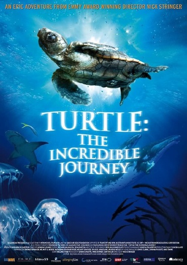 دانلود مستند Turtle: The Incredible Journey 2009