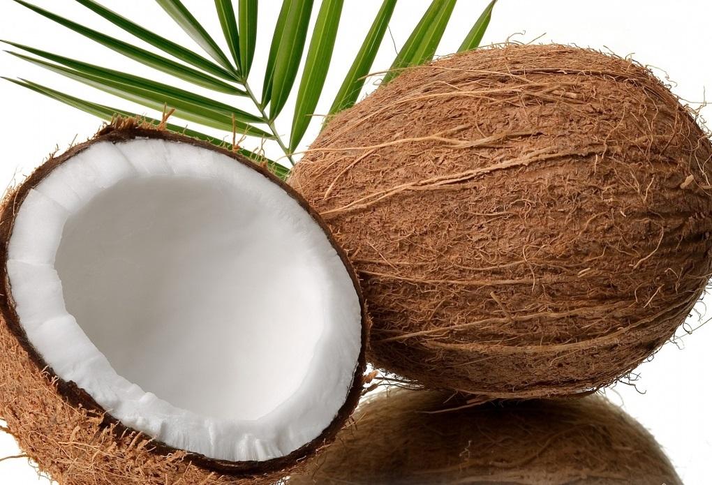 خواص گیاهان/Coconut نارگيل