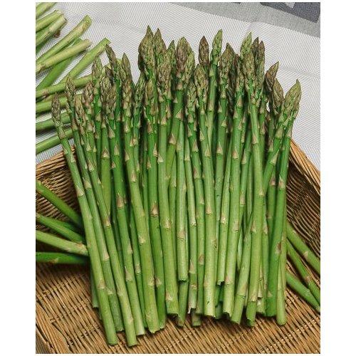 گیاهان دارویی/Asparagus مارچوبه