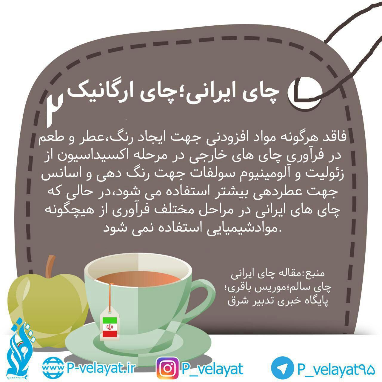 چای ارگانیک_چای ایرانی(2)