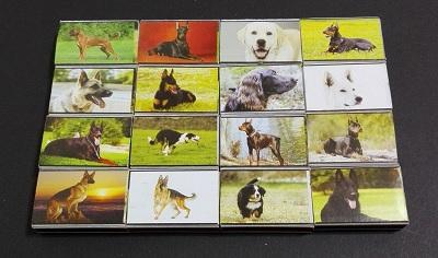 سگها (2).jpg (400×236)