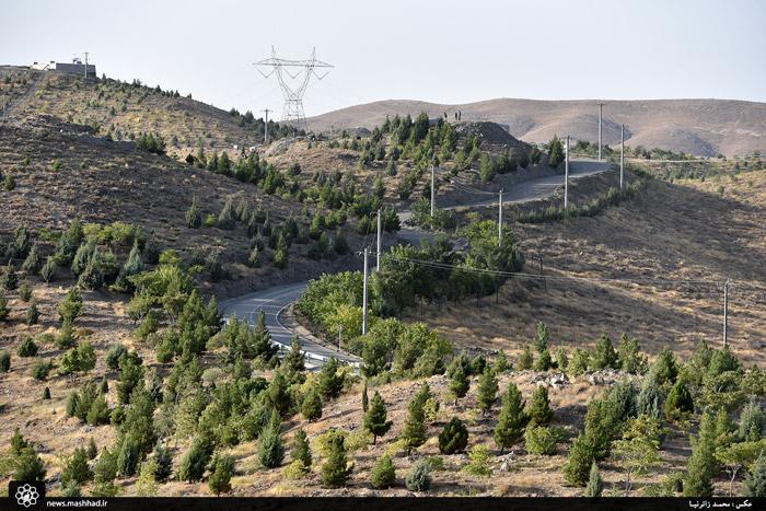 گزارشی از کمربند سبز جنوبی کلانشهر مشهد + تصاویر
