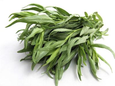گیاه ترخون