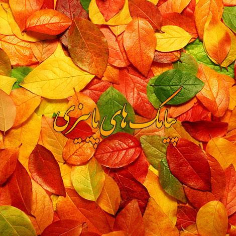 اس ام اس های زیبا و احساسی مخصوص فصل پاییز 1395