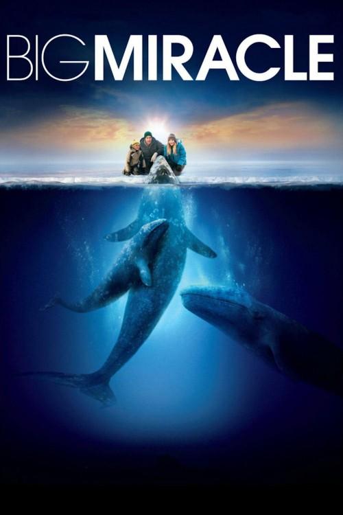 دانلود دوبله فارسی فیلم معجزه بزرگ Big Miracle 2012