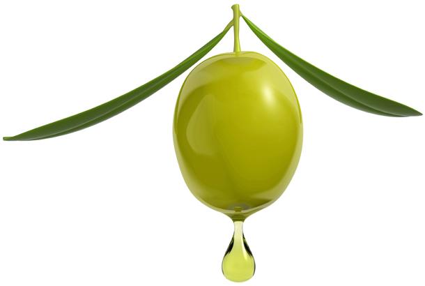 زیتون :Olive اطلاعات کامل و خواص دارویی و غذایی و...