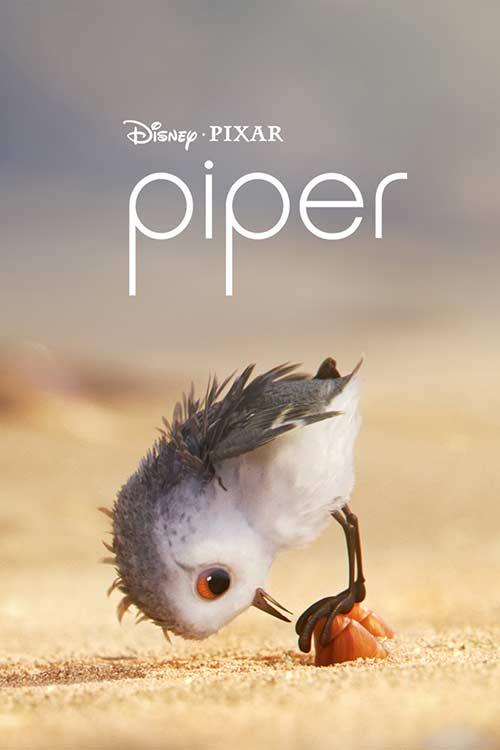 دانلود رایگان فیلم خارجی Piper 2016
