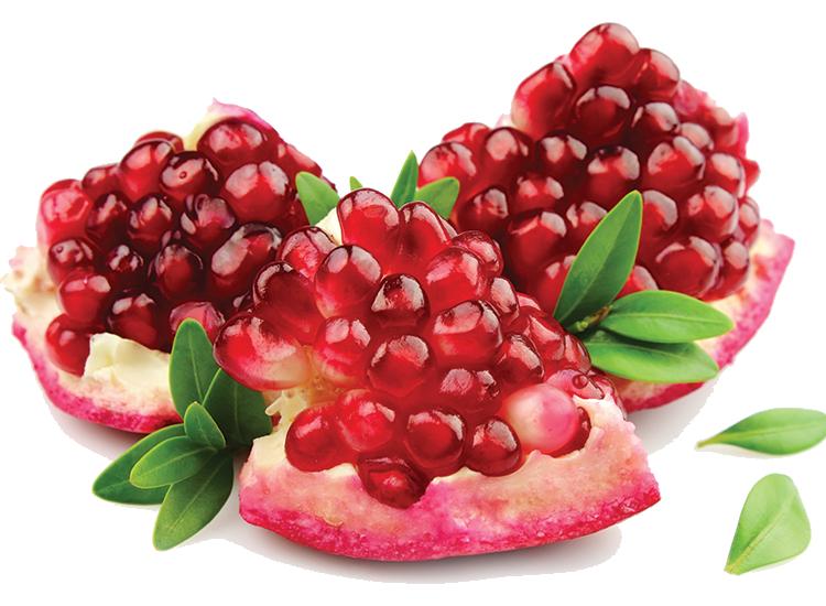 انار   Pomegranate  نام علمی   Punica