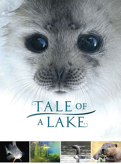 دانلود رایگان فیلم خارجی Tale Of A Lake 2016