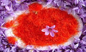 مشخصات برگ: برگ زعفران معمولاً از ۱سانتیمتر تا۴ سانتیمتر میباشد، زعفران برگهای نوک تیز دارد که روی آنها تیرهتر و زیر شان روشنتر است. شدت این تفاوت در گونههای مختلف متفاوت میباشد. ضخامت برگ هم ممکن است در ارقام مختلف زعفران مانند خزری، زاگرسی، سفید، بنفش، زیبا و جوقاسم کم یا زیاد باشد.