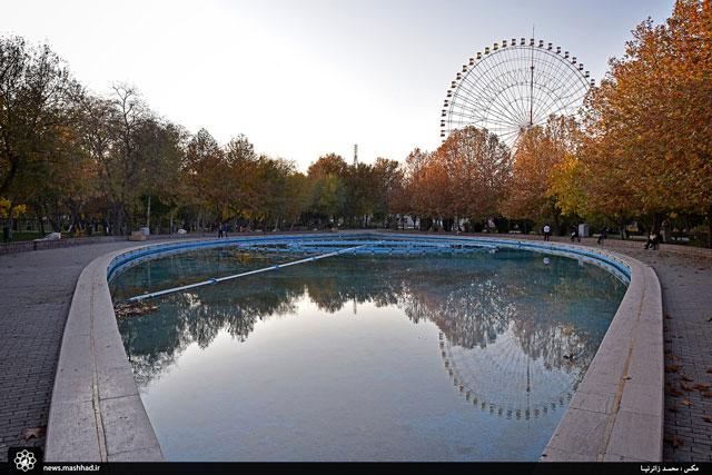 طبیعت پاییزی پارک ملت/گزارش تصویری