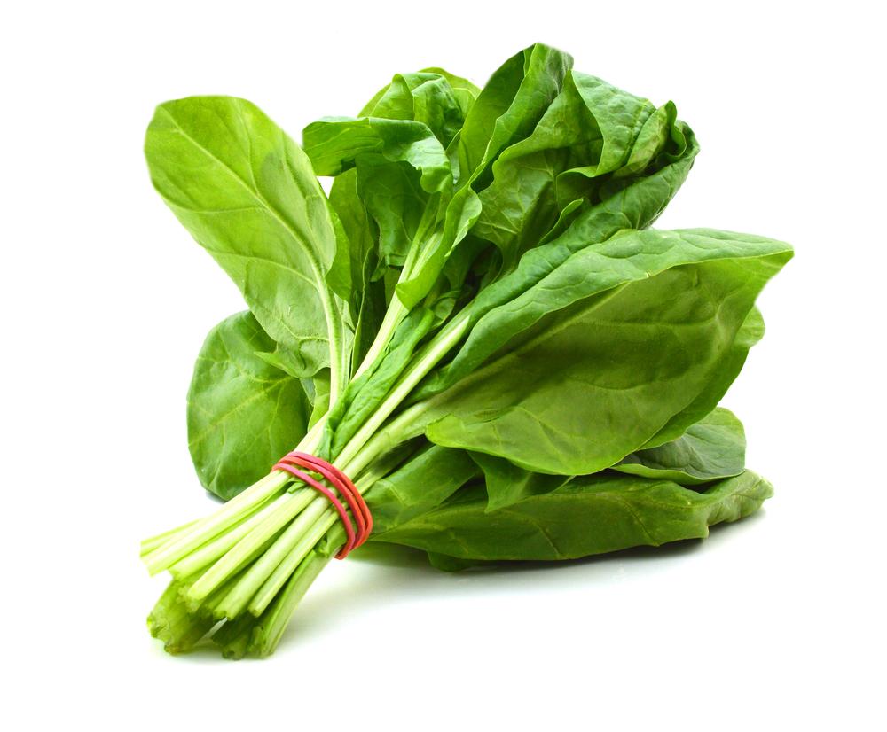 اسفناج : Spinach تركيبات شيميايي/خواص داروئي..