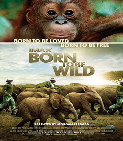 دانلود رایگان مستند متولد حیاط وحش IMAX: Born to Be Wild 2011
