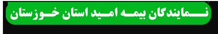 نمایندگان بیمه امید استان خوزستان
