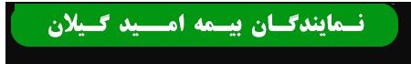 نمایندگان بیمه امید استان گیلان