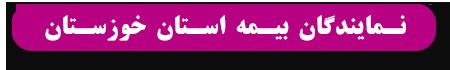 نمایندگان بیمه استان خوزستان