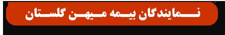 نمایندگان بیمه میهن استان گلستان