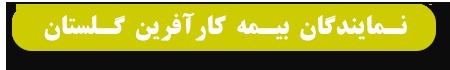 نمایندگان بیمه کار آفرین استان گلستان