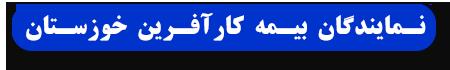 نمایندگان بیمه کار آفرین استان بوشهر