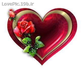 عکس عاشقانه گل سرخ و قلب