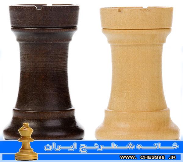 آموزش حرفه ای و اختصاصی شطرنج