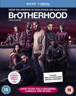 دانلود فیلم Brotherhood 2016 با زیرنویس فارسی