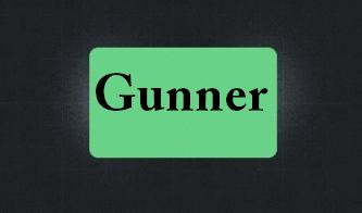 دانلود کانفیگ Gunner