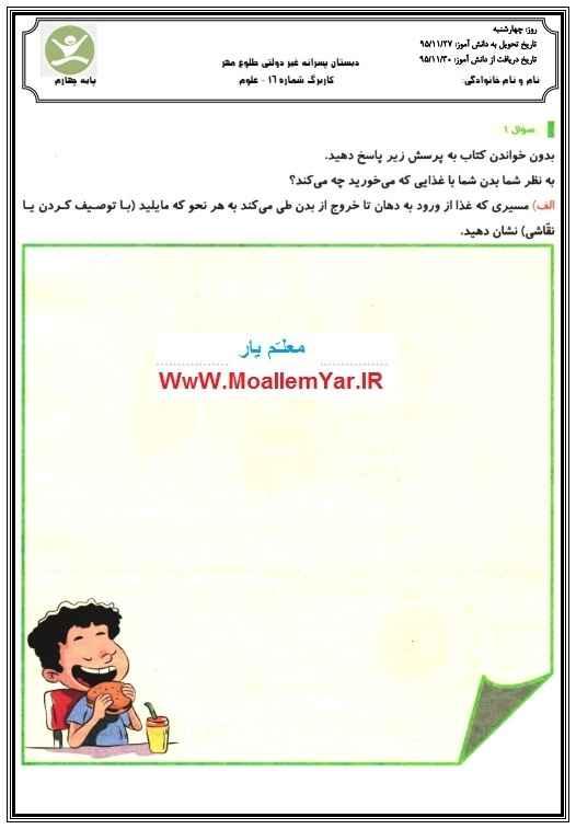 کاربرگ فصل نهم و دهم علوم چهارم ابتدایی (بهمن 95) | WwW.MoallemYar.IR