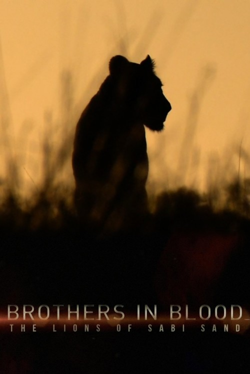 دانلود مستند Brothers in Blood: The Lions of Sabi Sand 2015