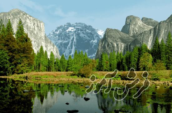 عکس از مدل های تابلو فرش مناظر طبیعی